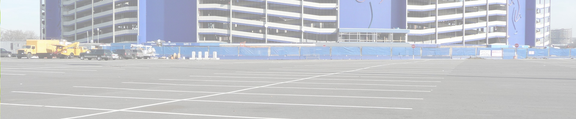 polarbear_stadium